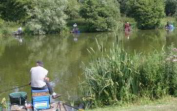 Match Fishing at Barford Lakes